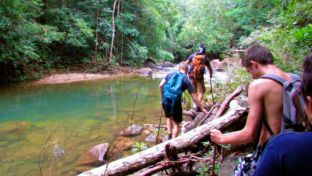 Jungle trekking on Koh Chang